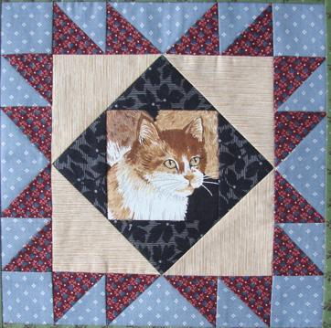 kitty block 2